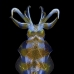 squid_reef_bigfin_bb_v_1419_alo3512.jpg