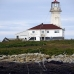 lighthouse_island_seal_machias_v_0342_can0714.jpg
