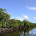 mangroves_channel_german_h_0073_yap0416.jpg