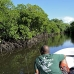 mangroves_channel_german_v_0030_yap0373.jpg