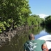 mangroves_channel_german_v_0033_yap0376.jpg